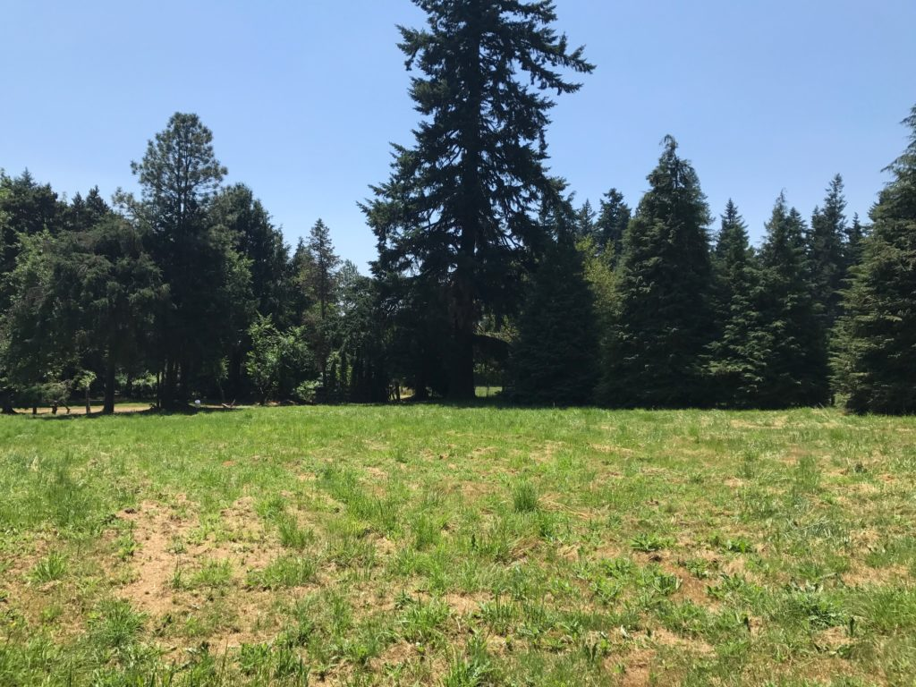 Canby Oregon, Canby Acreage, Oregon Hobby Farm, Canby Oregon Acreage, Oregon Small Farm